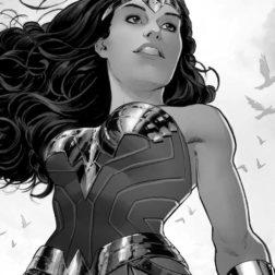 Wonderwoman NetB